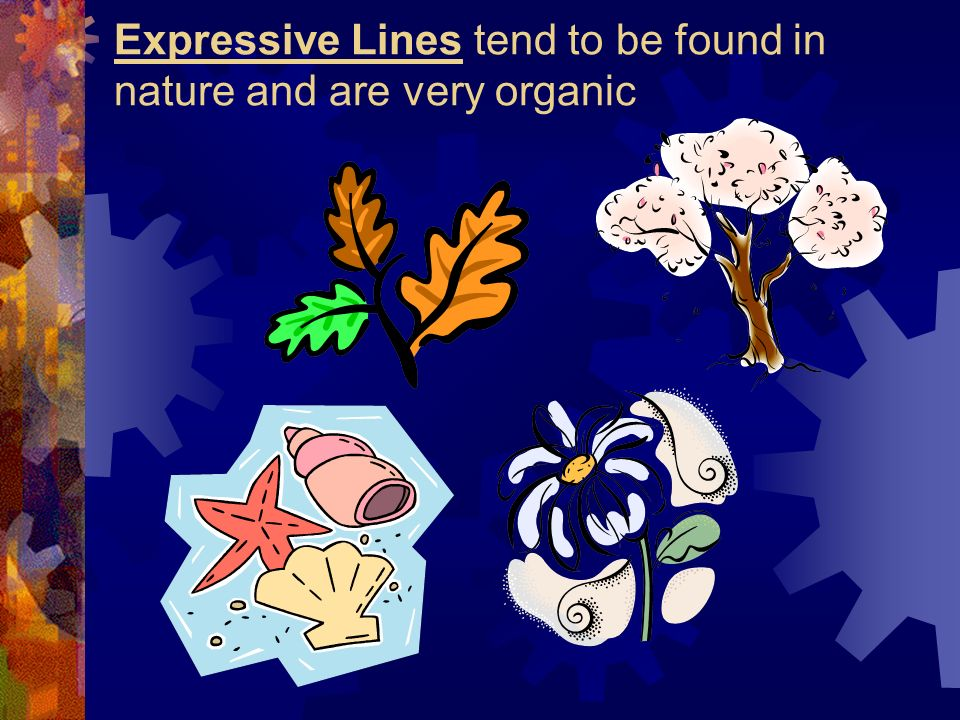 Expressive Lines tend to be found in nature and are very organic