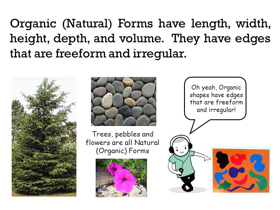 Organic (Natural) Forms have length, width, height, depth, and volume