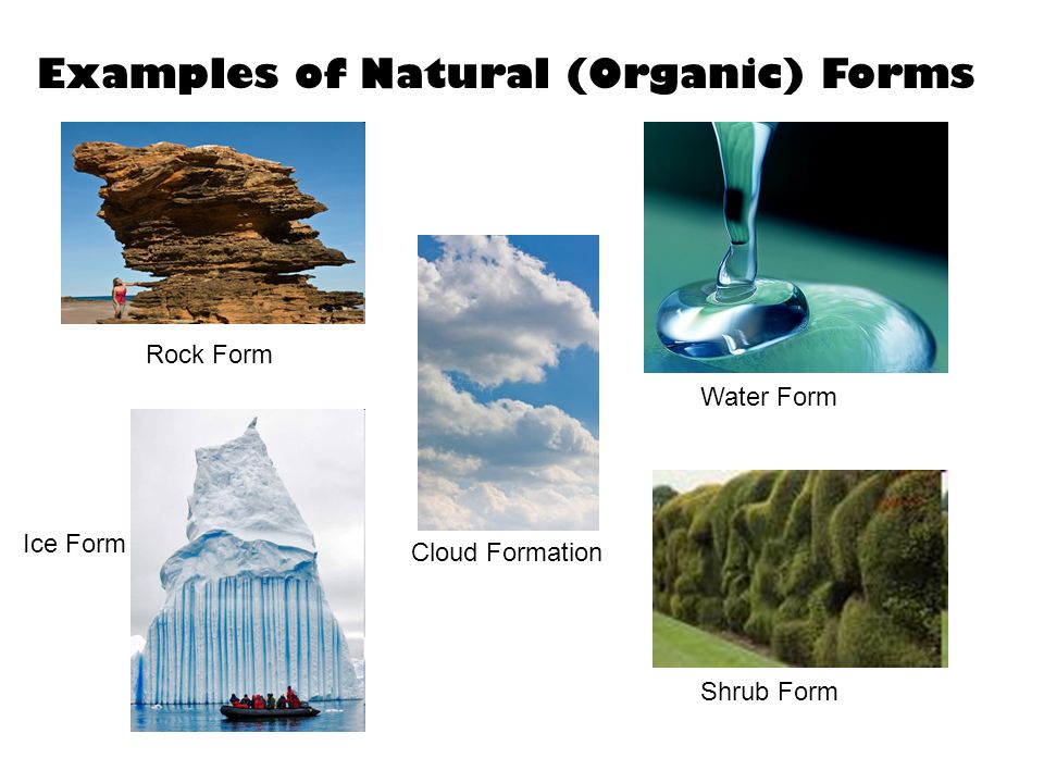 Examples of Natural (Organic) Forms