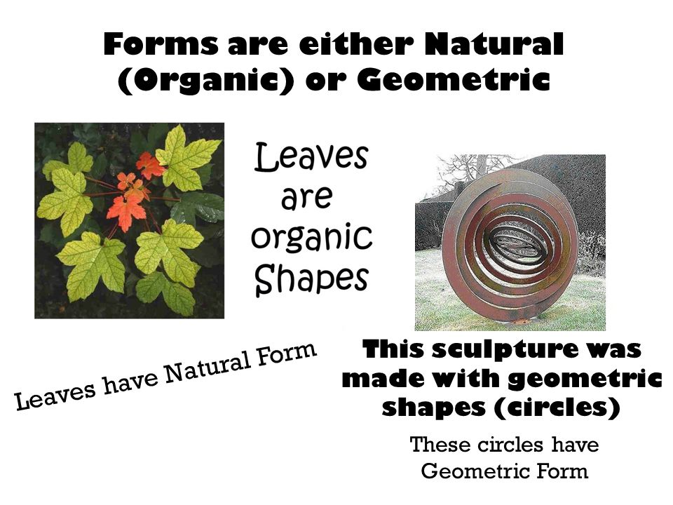 Forms are either Natural (Organic) or Geometric