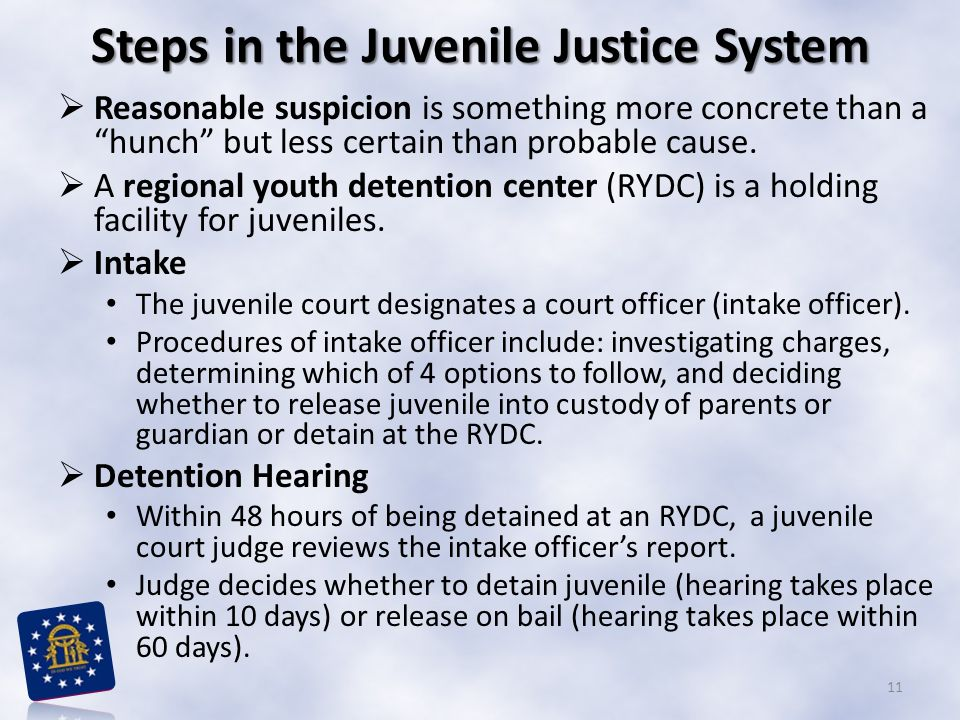 Steps in the Juvenile Justice System