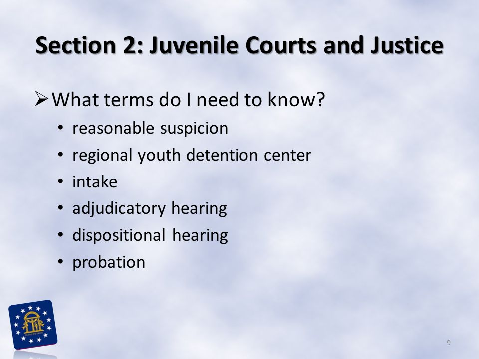 Section 2: Juvenile Courts and Justice