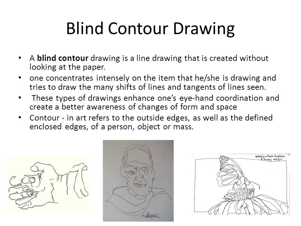 Contour Line In Drawing Definition : Blind contour ppt video online download