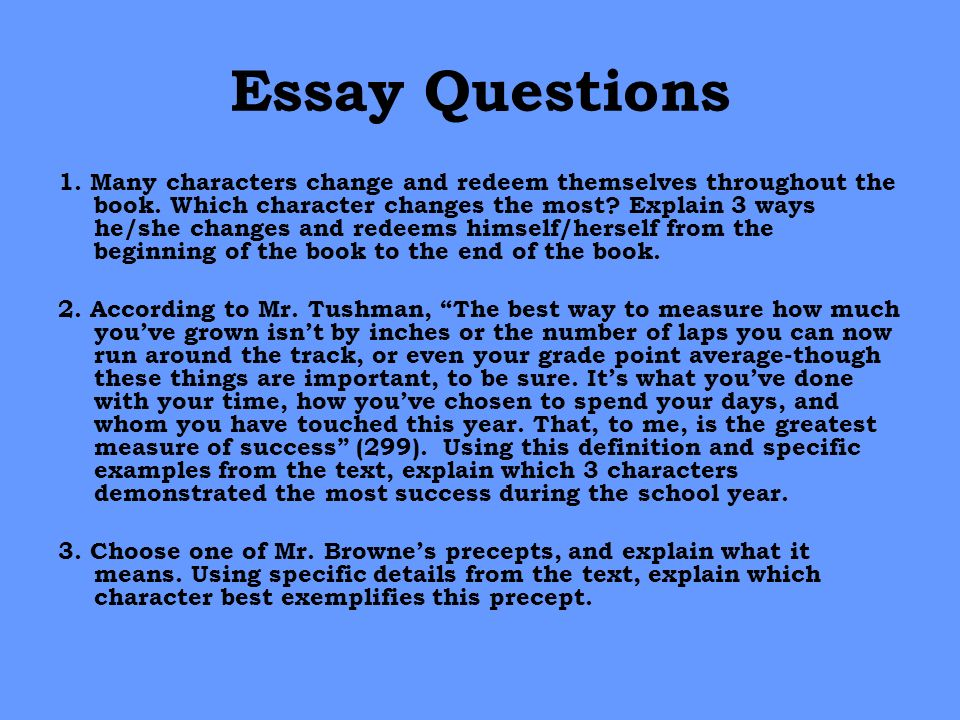 The Chosen: Essay Q&A