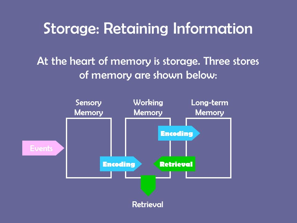 38 Storage Retaining Information