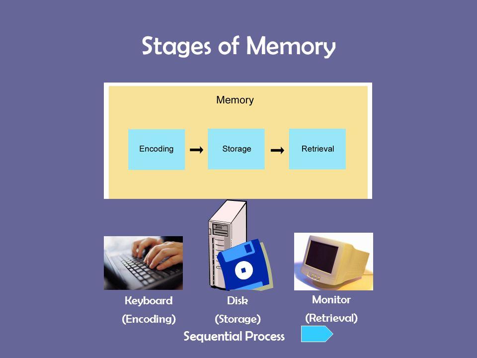 Words Essay On Memory  Words Essay On Memory