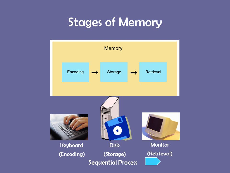 processes and stages of memory essay Psychosexual stages defense multi store model of memory the models main emphasis was on structure and tends to neglect the process elements of memory.