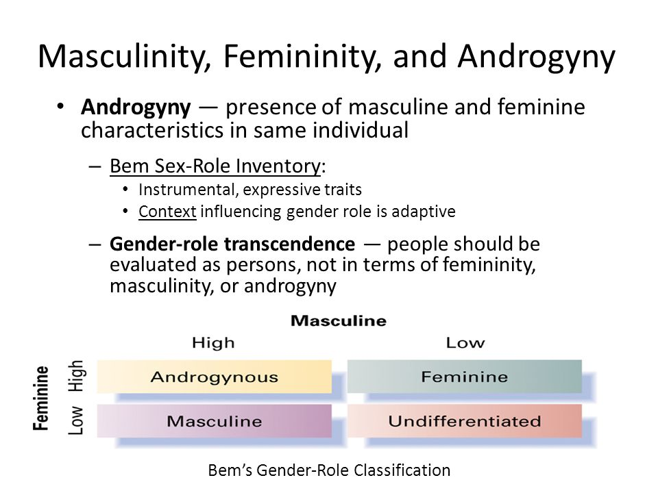 the classification and characteristics of the gender roles in the society Gender roles play a major role in today's society and have throughout our history   used the following characteristics to classify the marriage of the couples they.
