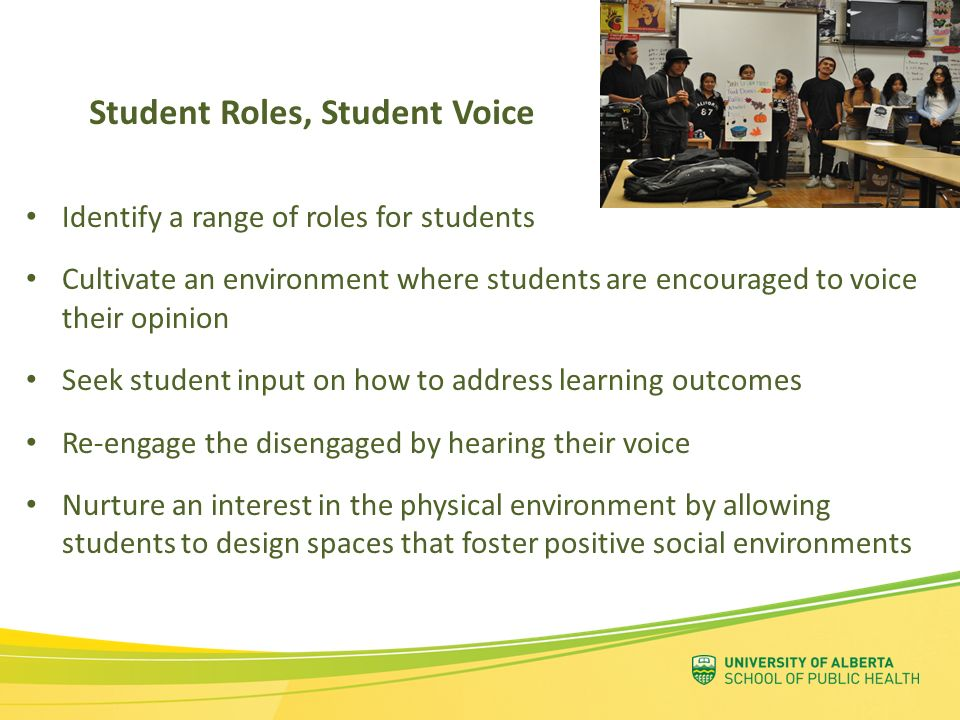 Student Roles, Student Voice