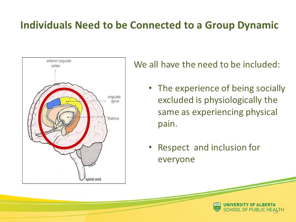 Individuals Need to be Connected to a Group Dynamic