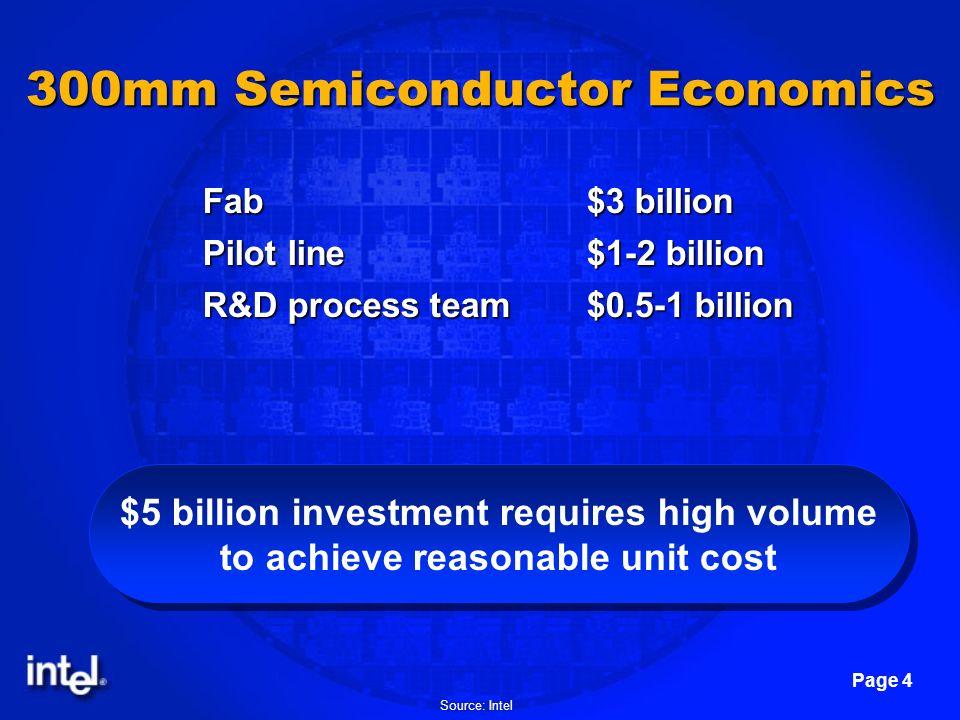 300mm Semiconductor Economics