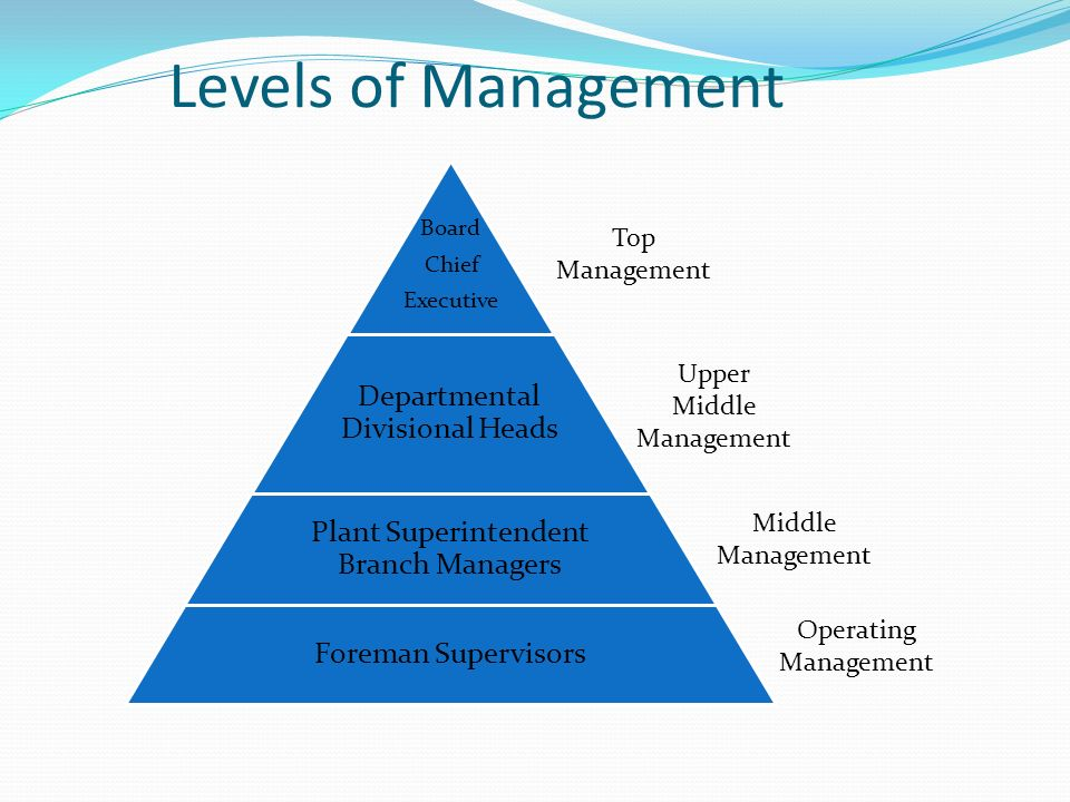 Levels of Management Departmental Divisional Heads