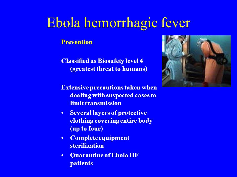 What is Ebola Virus Disease?