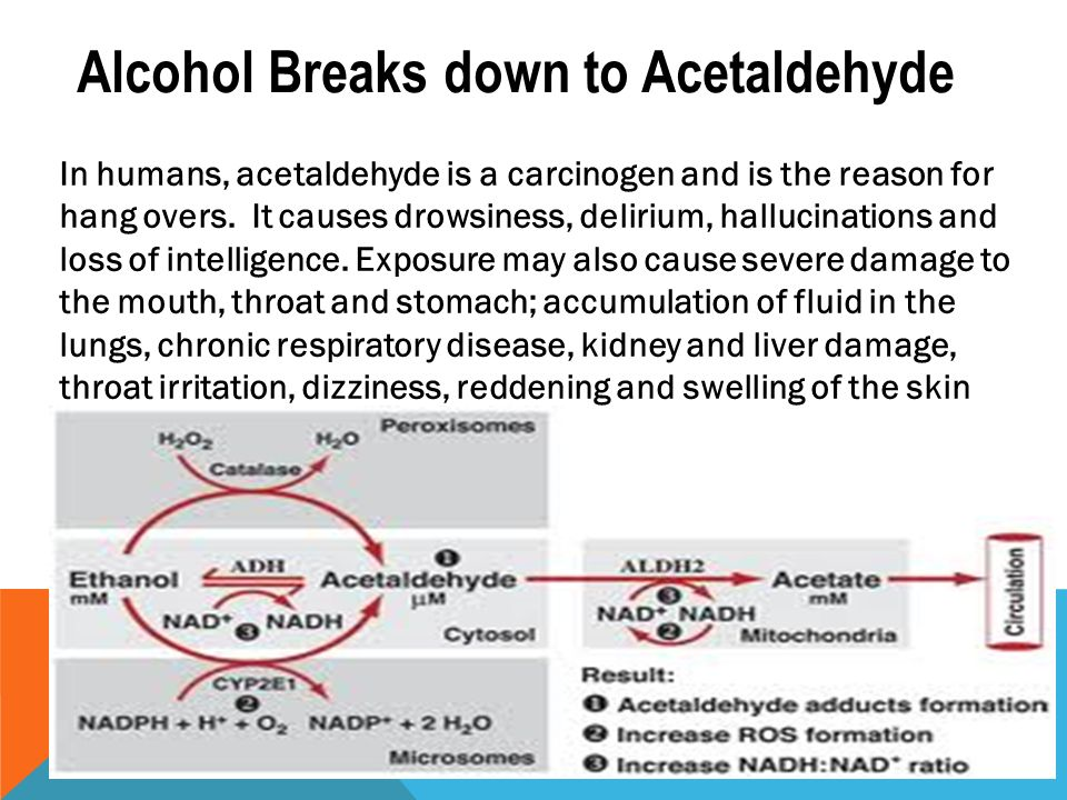 alcohol and acetaldehyde A new study published today in the journal addiction shows that drinking alcohol is the greatest risk factor for acetaldehyde-related cancer heavy drinkers may be at increased risk due to exposure from multiple sources.