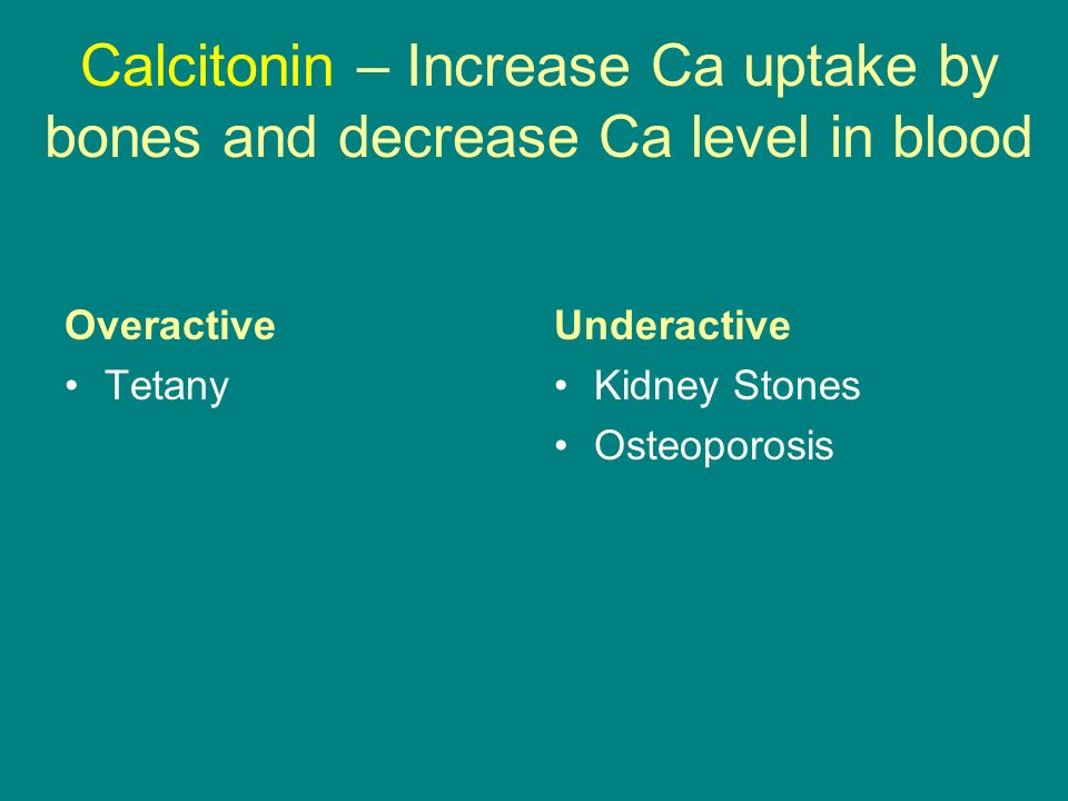 Calcitonin – Increase Ca uptake by bones and decrease Ca level in blood