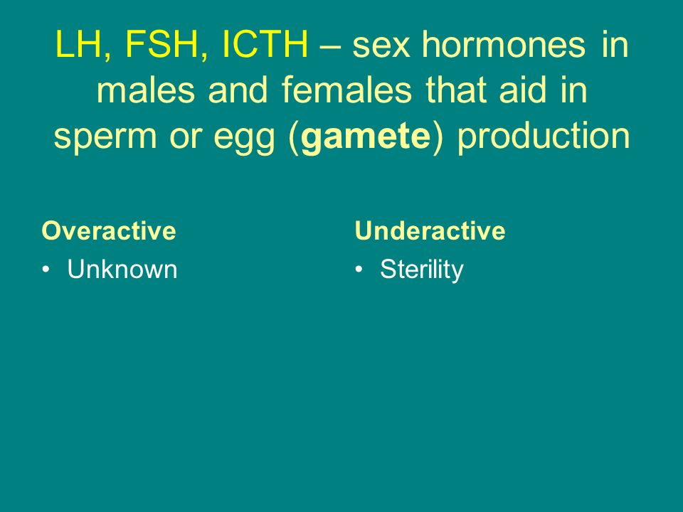LH, FSH, ICTH – sex hormones in males and females that aid in sperm or egg (gamete) production