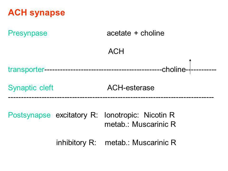 ACH synapse Presynpase acetate + choline ACH