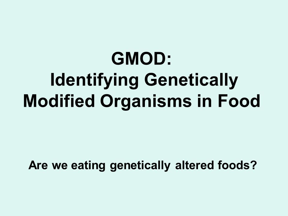 GMOD: Identifying Genetically Modified Organisms in Food