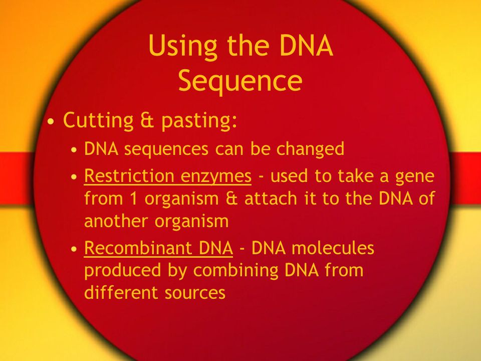 Using the DNA Sequence Cutting & pasting: DNA sequences can be changed