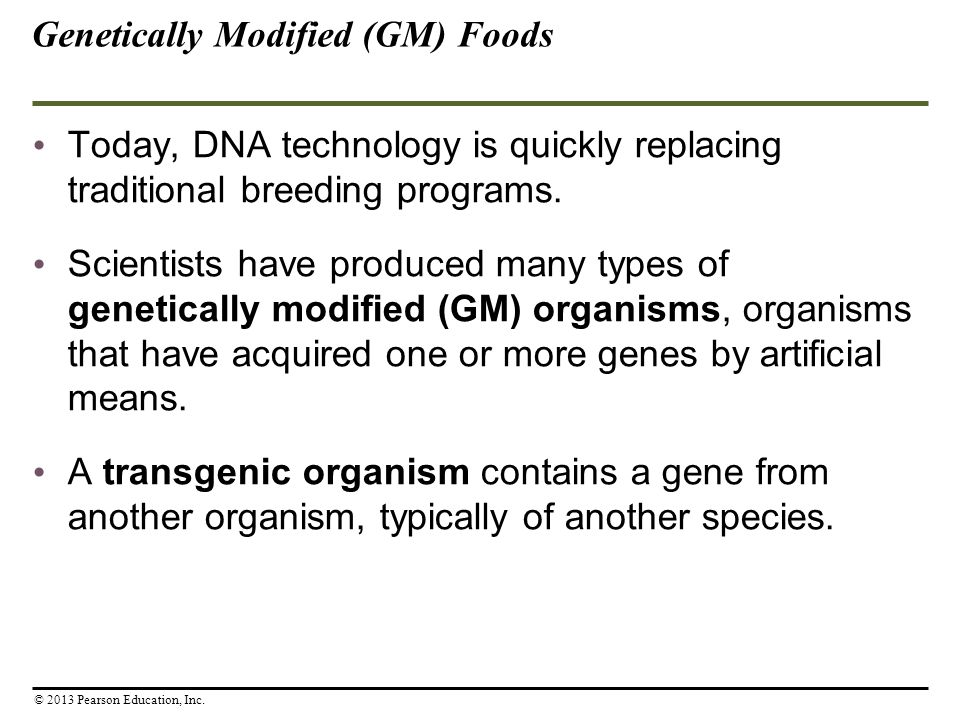 GMOs: Facts About Genetically Modified Food