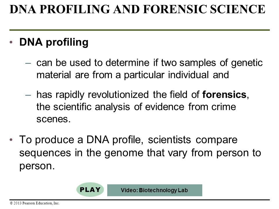 genetic profiling legal studies essay Learn about the pros and cons of dna testing in the criminal justice system, dna profiling has reversed convictions and set people free from prisons at the same time related legal terms destructive testing, employment testing.