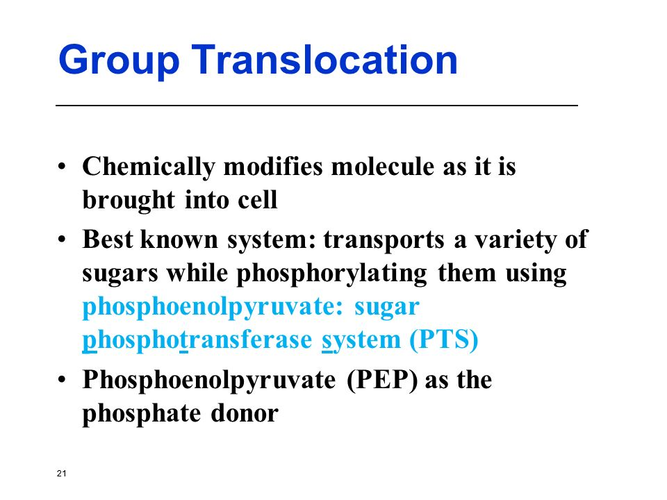 Group Translocation Chemically modifies molecule as it is brought into cell.