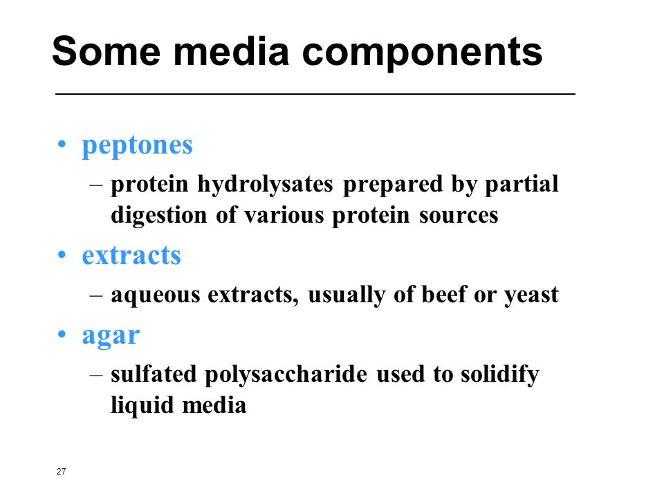Some media components peptones extracts agar