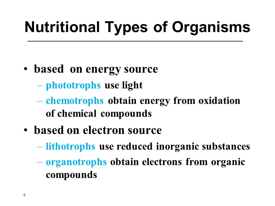 Nutritional Types of Organisms