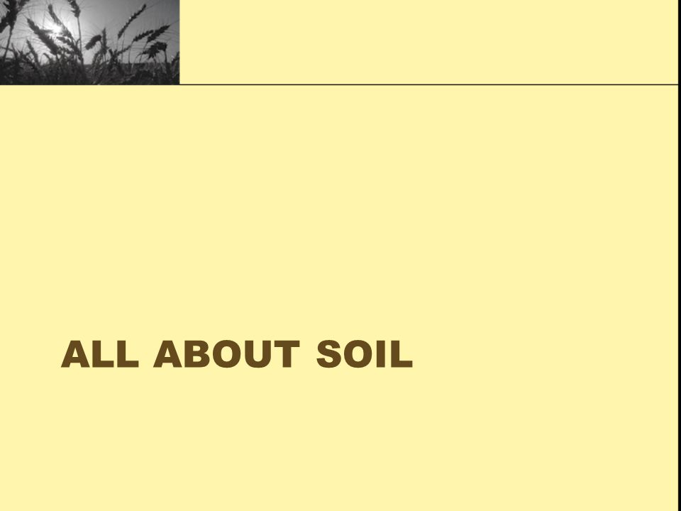 Soil agriculture and future of food ppt download for All about soil