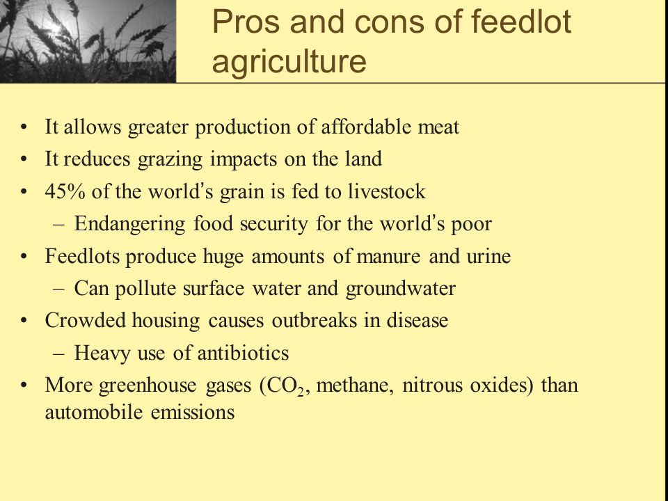 Soil agriculture and future of food ppt download for Fish farming pros and cons