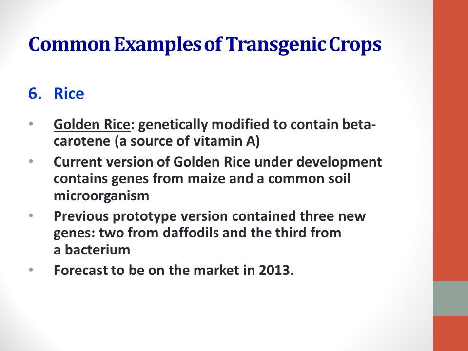 Biotechnology and Agriculture - ppt download