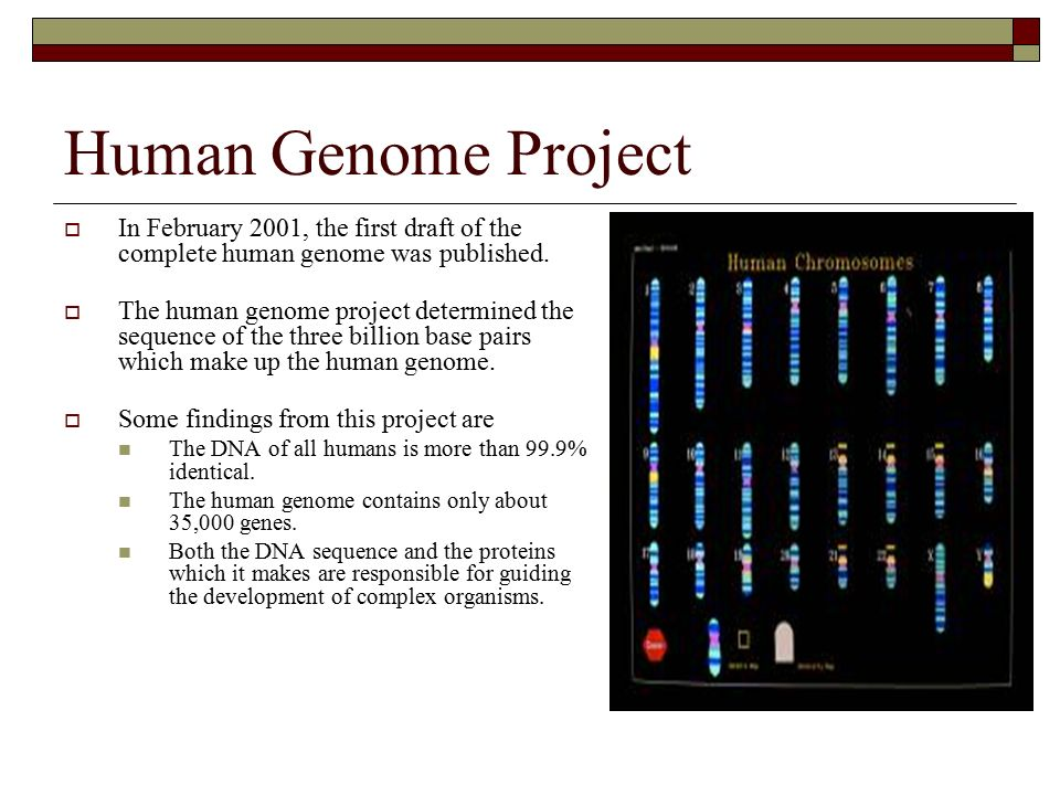 the development and impact of the human genome project The human genome project (hgp) was a collaborative scientific research program on international scale conducted to discover all the chemical base pairs which make up human dna.