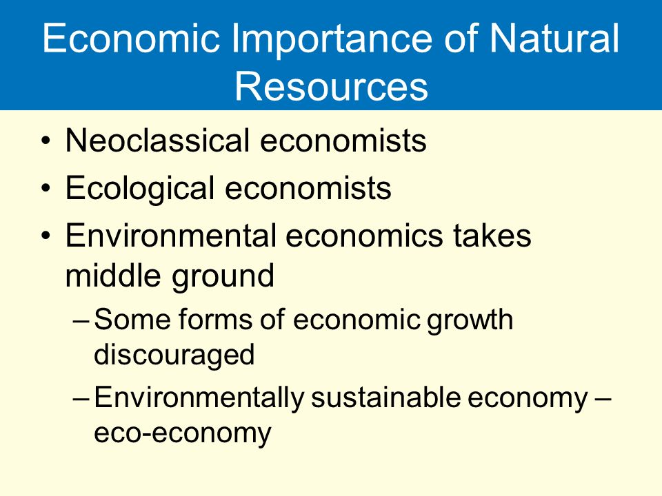 importance natural resources The natural resources and sustainable development 93 cercet the role and importance of the natural resources and environmental services.