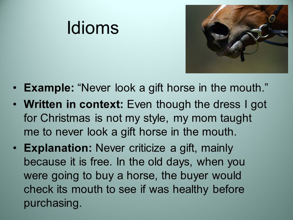 To See Gift Horse In The Mouth Idiom Meaning - Pictures of Horses