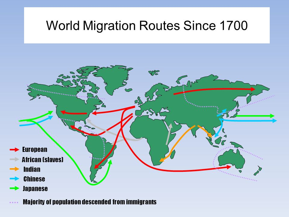 what is internal migration pdf
