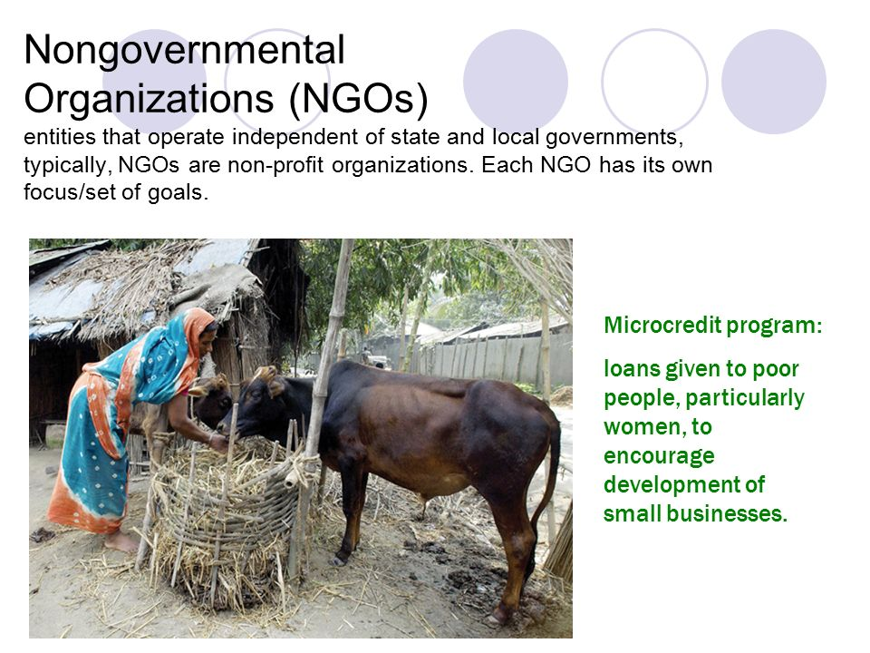 ngos and government relationship people