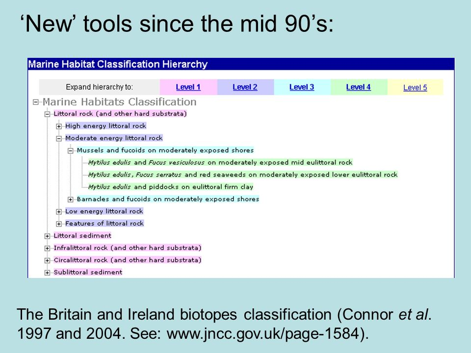 'New' tools since the mid 90's: