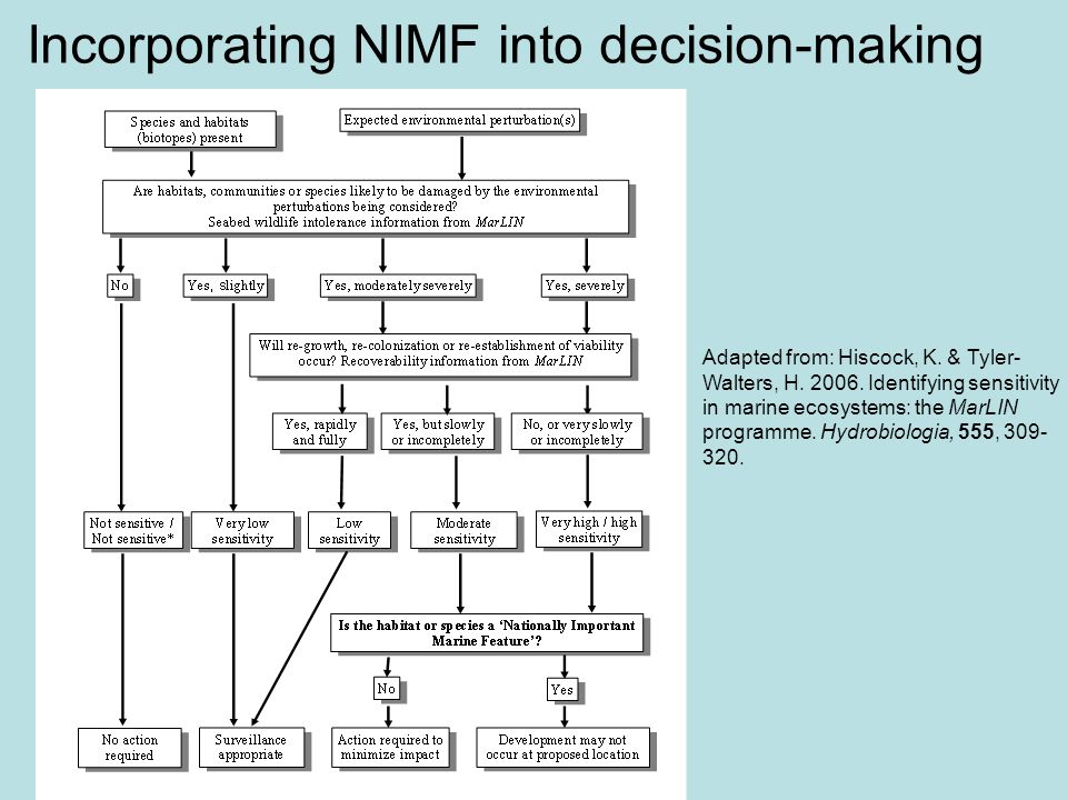 Incorporating NIMF into decision-making