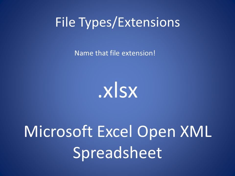 File Types Ms Word And Ms Excel Ppt Video Online Download