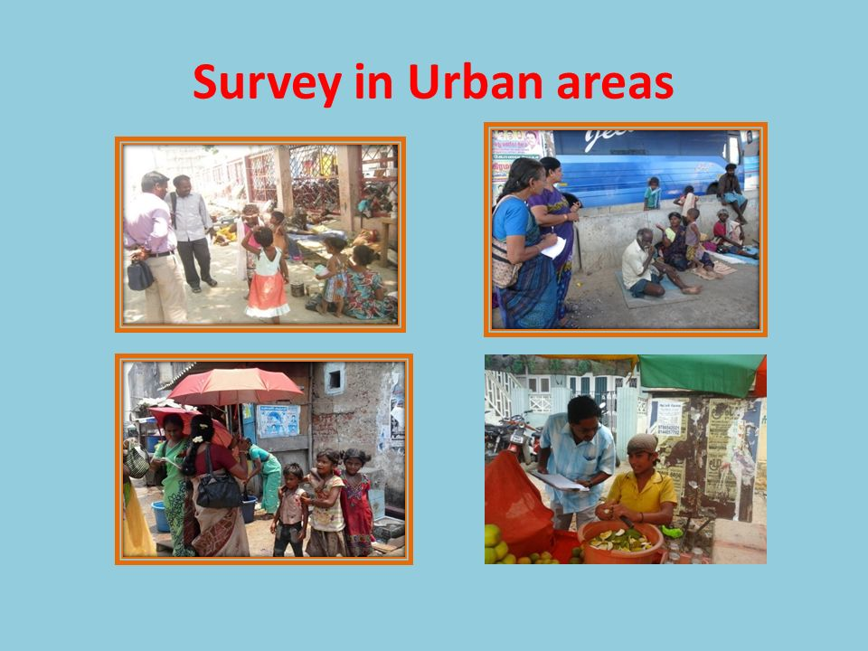 Survey in Urban areas