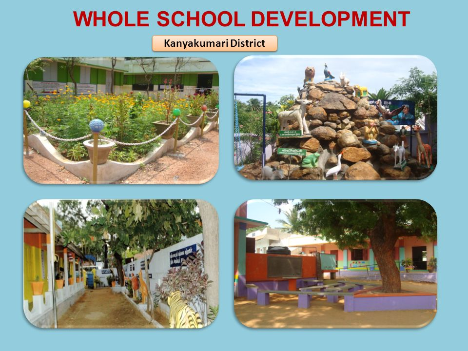 WHOLE SCHOOL DEVELOPMENT