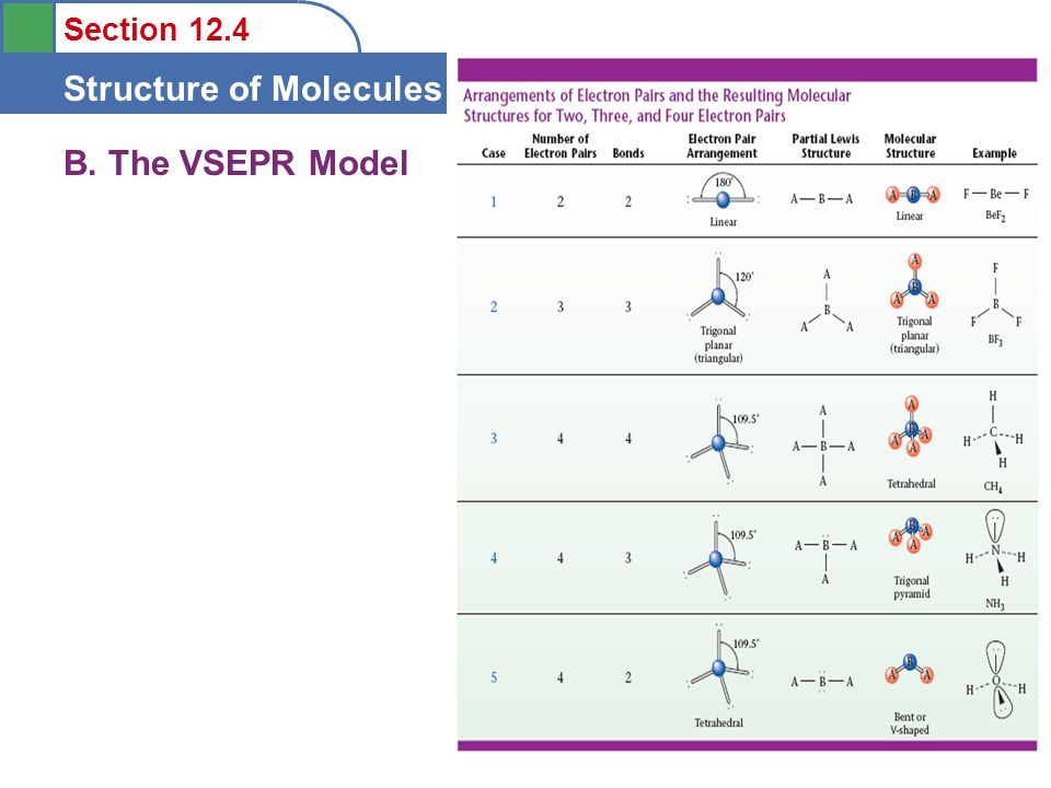 B. The VSEPR Model