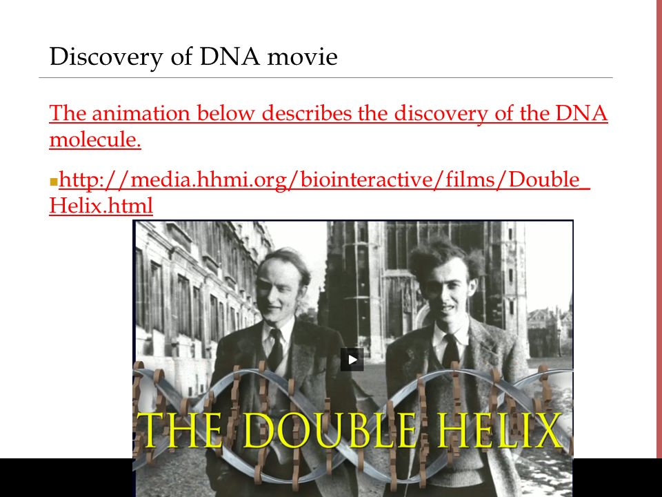 the discovery of dna Kids learn about james watson and francis crick's biography these scientists discovered the structure of dna called the double helix they were molecular biologists.