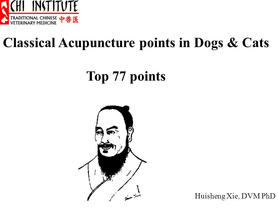 Classical Acupuncture points in Dogs & Cats Top 77 points