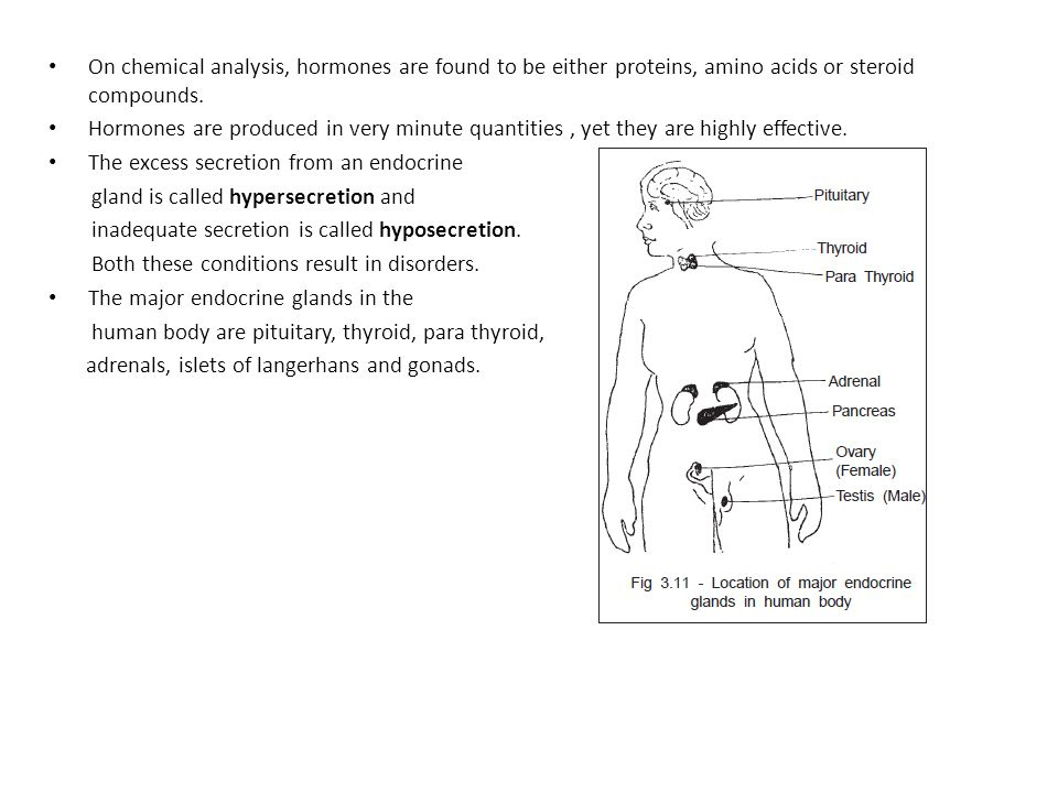 an analysis of the disorders of the endocrine gland Overview of endocrine disorders  several hormones require conversion to an active form after secretion from the peripheral endocrine gland certain disorders can .