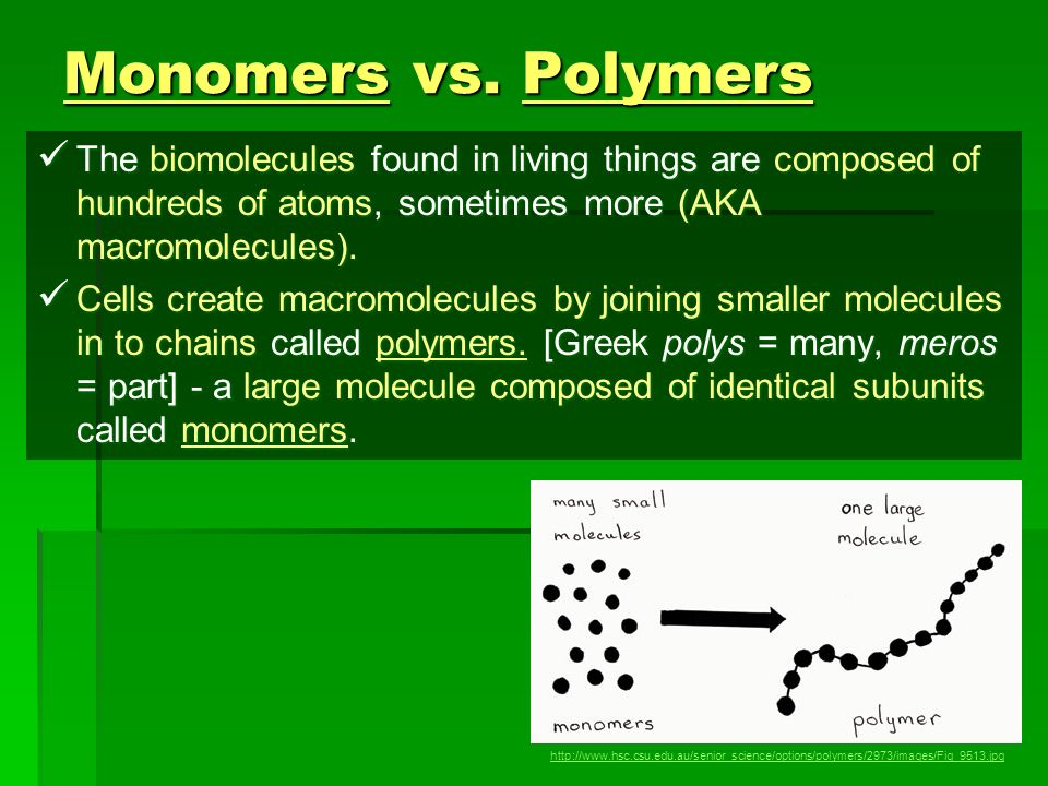 Monomers vs. Polymers The biomolecules found in living things are composed of hundreds of atoms, sometimes more (AKA macromolecules).