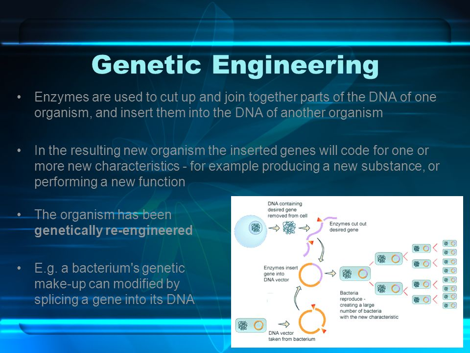 the characteristics of cloning a process of creation of one organism from anothers dna Definition of gmo: a genetically modified organism (gmo) is an organism that has undergone a recombinant dna procedure recombinant dna technology involves the transfer of genetic material from one organism to another plant or animal.