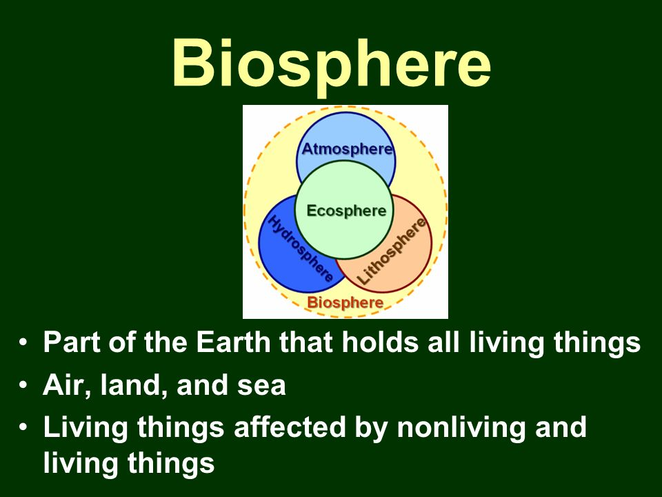 Biosphere Part of the Earth that holds all living things