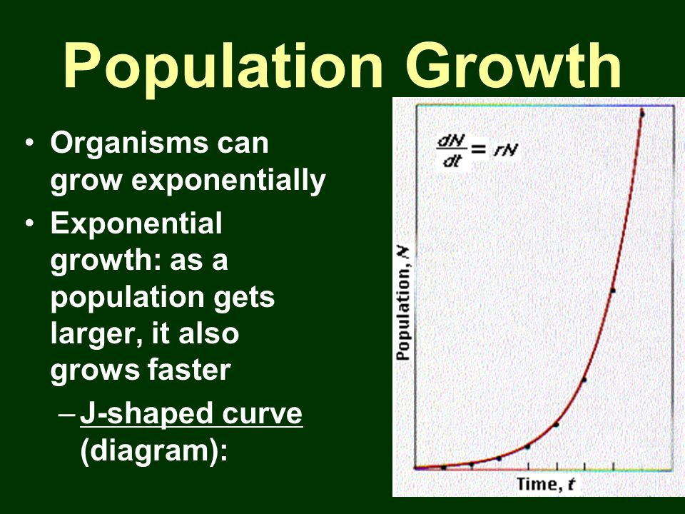 Population Growth Organisms can grow exponentially