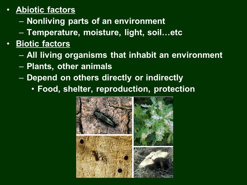 Abiotic factors Nonliving parts of an environment. Temperature, moisture, light, soil…etc. Biotic factors.